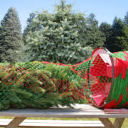 Red and Green Netting